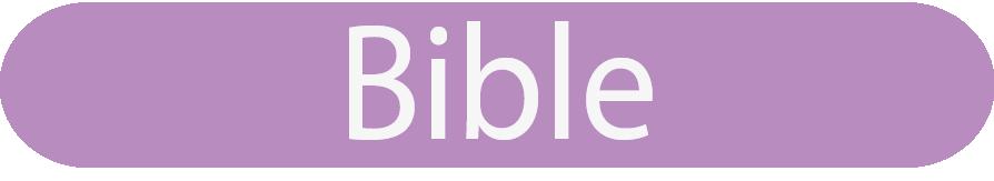 bible grupo editorial verbo divino