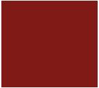 Logo-Bolivia